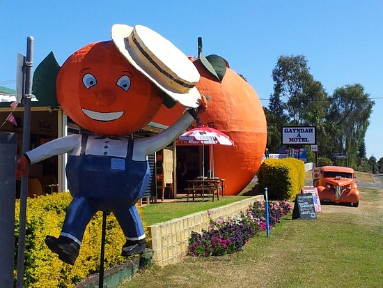 Gayndah's Big Orange