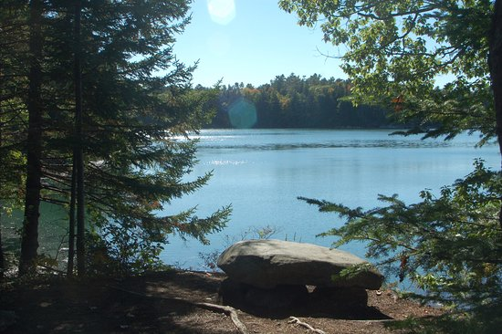 Coastal Maine Botanical Gardens: View from the river side path