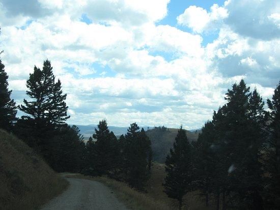 Blacktail Plateau Drive Photo