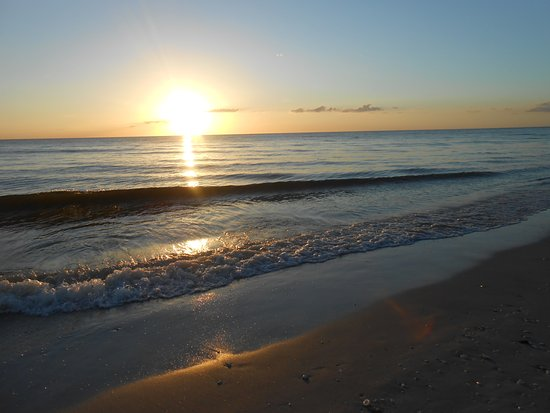 Placida, Floride : This time the beach had lots of dead fish from the red tide, but it was still beautiful and quie