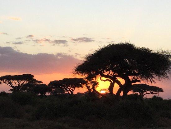 Natural World Kenya Safaris Wish Can See This Beautiful Sunset Againbye Bye