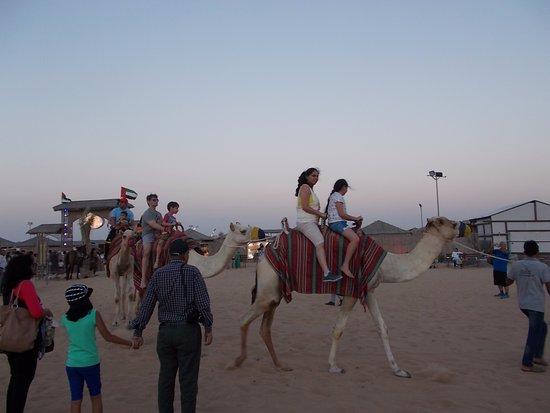 Desert safari rayna tours dubai camel rides picture of desert desert safari dubai desert safari rayna tours dubai camel rides thecheapjerseys Image collections