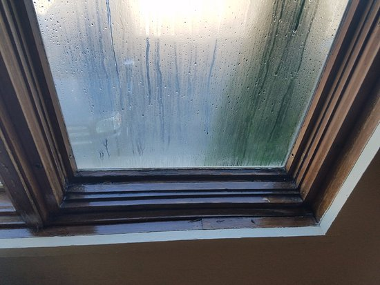 Fox Hills Resort: Condensation on the window just from us sleeping overnight.