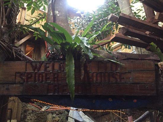 Spider House Resort: photo5.jpg