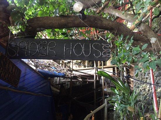 Spider House Resort: photo6.jpg