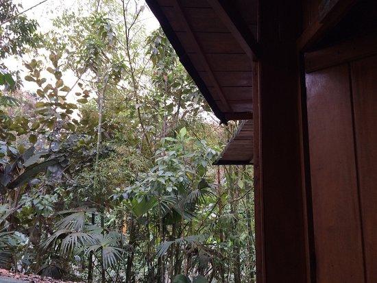 Cabanas Armonia y Jardin de Orquideas: photo0.jpg