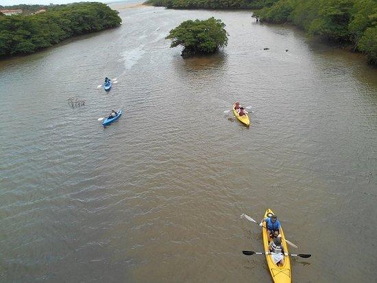 Miyara River Hirugi Grove Bild