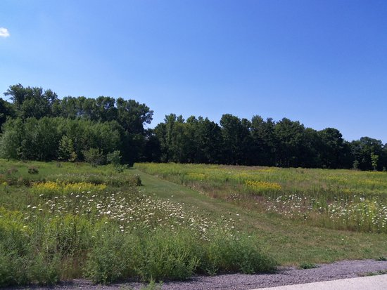 Mequon, WI: there are paths thru the prairies, and up to the tree lines.