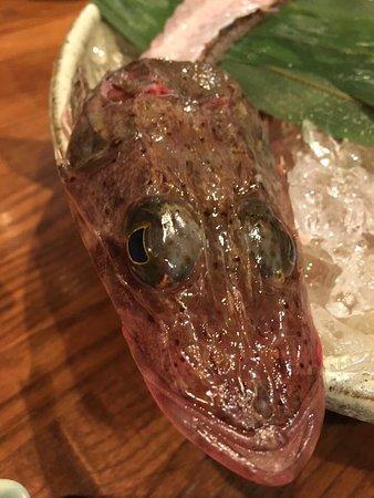 Kaizuka, Japão: その日のお刺身メゴチ