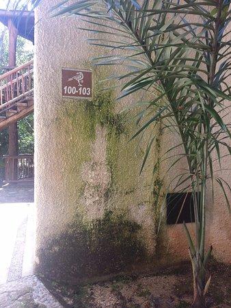 Bel Air Collection Xpu Ha Riviera Maya: Todo está roto, viejo y en mal estado. No hay telefono, no hay playa y el club de playa es penos
