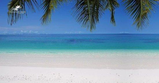 Praslin Adası, Seyşeller: Anse Georgette