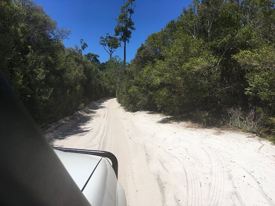 Fraser Coast, Australia: photo0.jpg