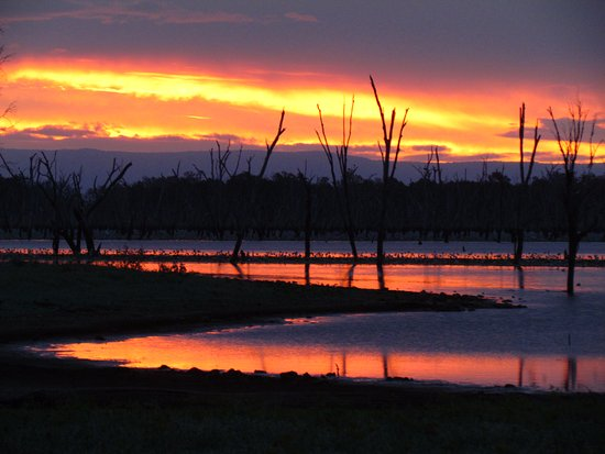 Roma, Australien: Lake Nuga Nuga