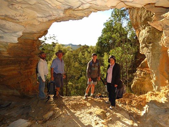 Roma, Australia: Wallaroo in the Carnarvon Range