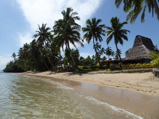 Остров Бека, Фиджи: Restaurant on the right, Ocean View Bures far down left.