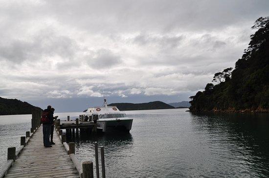 Picton-billede