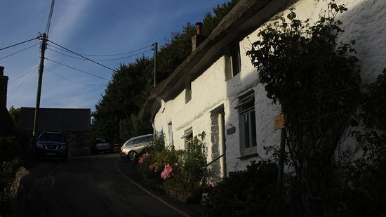 Cadgwith, UK: Only yards from the pub!