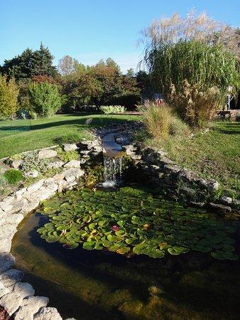 Le Thor, Frankrike: C'est l'étang (pas la piscine)...