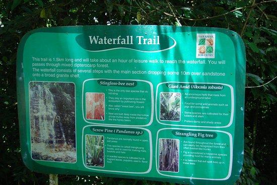 Kubah National Park: Waterfall trail details