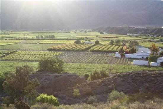 Calitzdorp, South Africa: View of the Gamka Valley and De Krans Wines