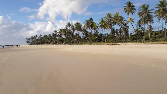Praia Cana Brava