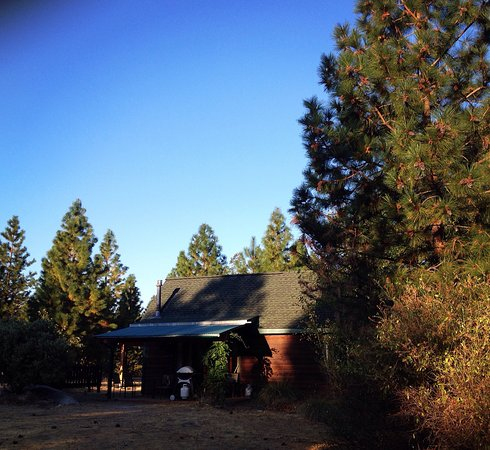 Yosemite Hilltop Cabins: The Sage Cabin!