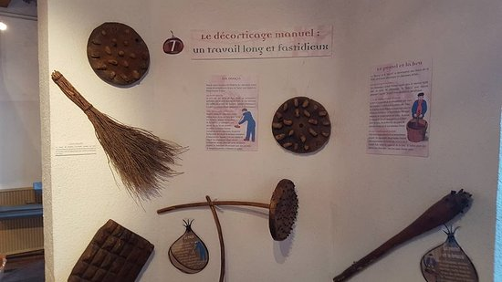 Musee de la Chataigneraie: musée
