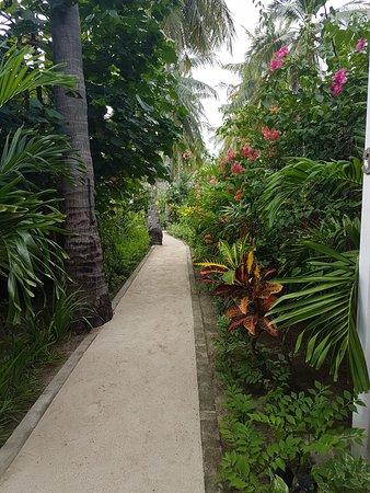 Taman resort di depan room Picture of Sunset Palms Resort Gili