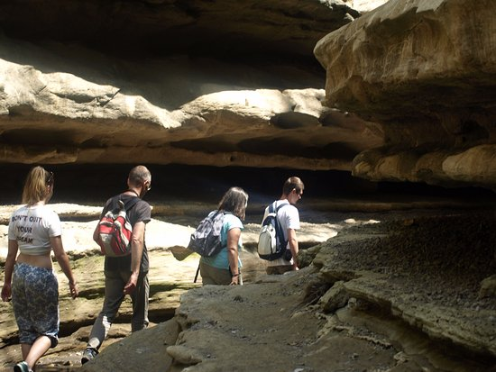 Hell's Gate National Park: Our alk through Hell's Gate Gorge. Note that some climbing is involved in this activity.