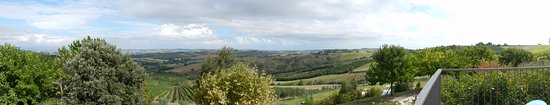 Montecarotto, Italia: Scenario mozzafiato <3