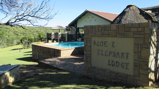 Oost-Kaap, Zuid-Afrika: Aloe and Elephant lodge is nestled in the pristine Eastern Cape indigenous bush.