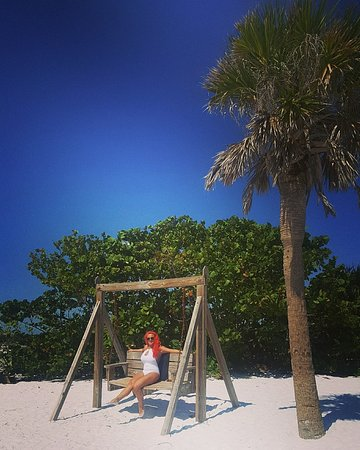‪‪Honeymoon Island State Park‬: Swinging bench‬