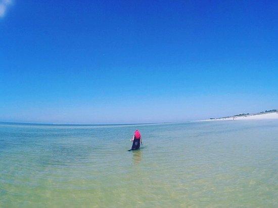 Honeymoon Island State Park: Clear water