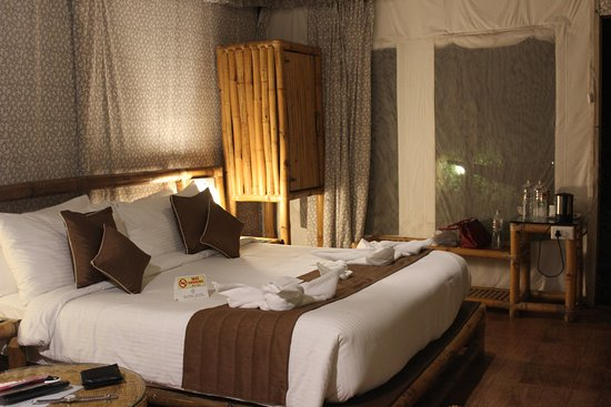 WOW Bison Woods Grand Swiss Tent Room & Grand Swiss Tent Room - Picture of WOW Bison Woods Yercaud ...