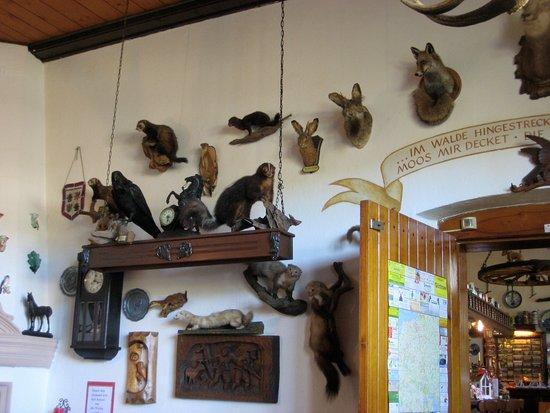 Hohen Demzin, Alemania: Totes Getier an der Wand