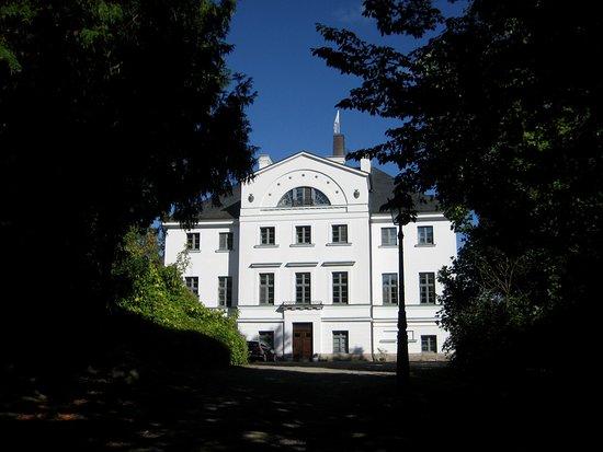 Hohen Demzin, Deutschland: Burg Schlitz