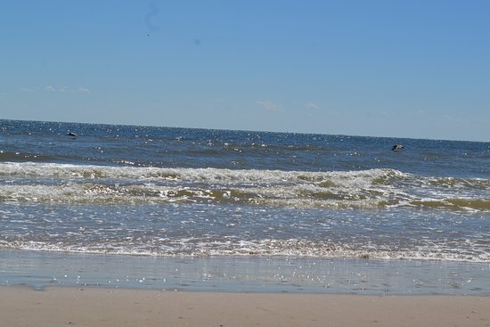 Matagorda Beach All You Need To Know Before You Go With Photos Tripadvisor