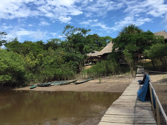 Amazonia Expeditions' Tahuayo Lodge: Lodges are built on stilts due to the significant variations in the water level of the river.