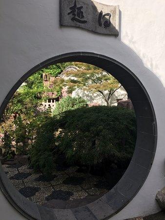 New York Chinese Scholar's Garden: Chinese Scholar's Garden