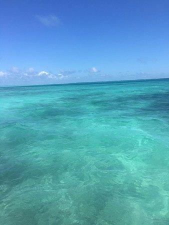 Posada Macanao Lodge: Las cristalinas aguas color esmeralda de Los Roques.