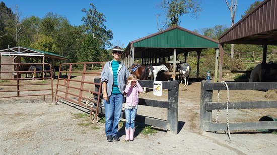 Whispering Woods Riding Stable: 20161010_121609_large.jpg