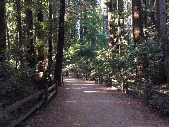 Felton, Californie : photo0.jpg