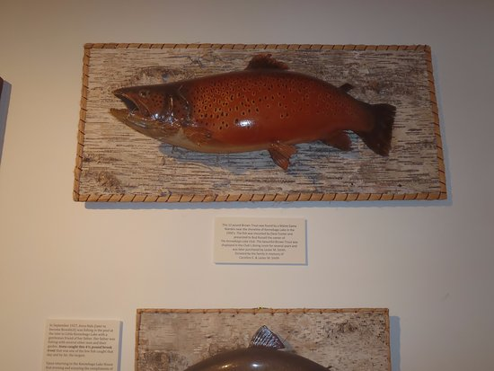 Oquossoc, ME: Historical mount of the huge trout once frequent to the area