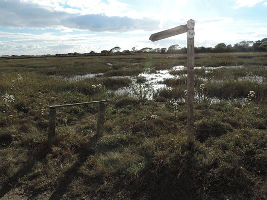 Sidlesham, UK: Walks across the Marshes to Pagham
