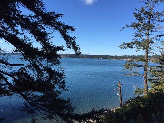 Friday Harbor, Waszyngton: Beautiful views wherever you bike.