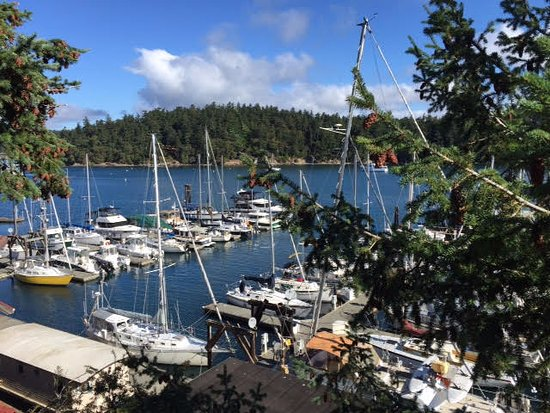 Friday Harbor offers best views from a bicycle.