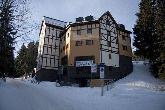 Apartments Javor