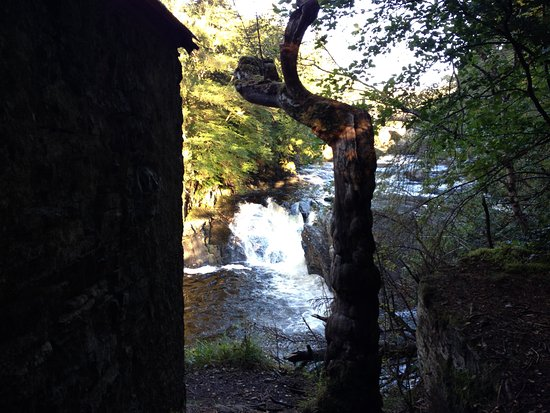 Loch Ness Highland Lodges: river walk