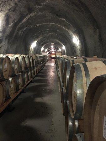 Pine Ridge Winery: photo1.jpg