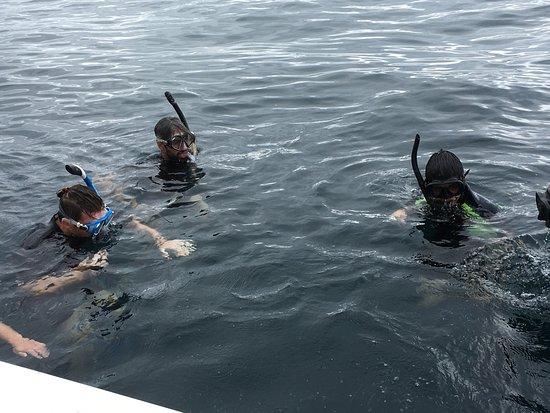 Puerto Baquerizo Moreno, Ekwador: Certains feront du snorkeling ou un tour de tout cet endroit